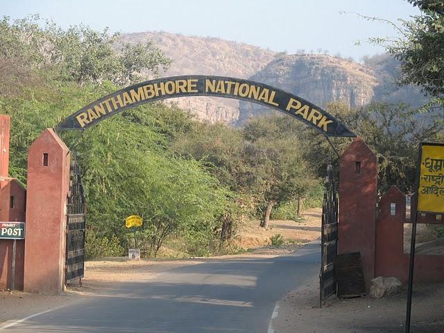 Ranthambhore Tiger safari park