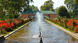 Kashmir's Pride: The Surreal Mughal Gardens