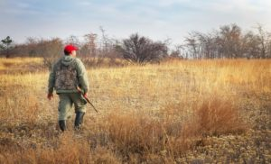 hunting spot